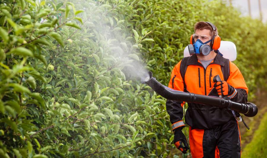 Обработка сада от вредителей и болезней